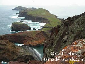 View of Ponta de São Lourenço